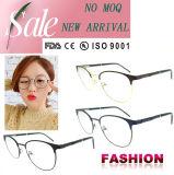 Frames van het Oogglas van Eyewear van de Ontwerper van het Frame van de Acetaat van de manier de Optische Nieuwe Model