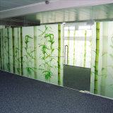 Изолированное стеклянное окно с AS/NZS2208: 1996, BS6206, En12150