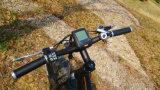 Freno hidráulico del MEDIADOS DE mecanismo impulsor 4.0 bici eléctrica del neumático 500W 48V de la pulgada de la batería gorda de la botella