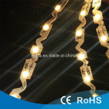 12V SMD 5050 LED tira flexible