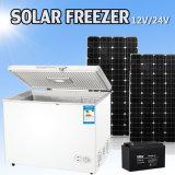 258L 12V ou 24V DC Compressor Solar Commercial Freezer