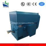 motore a corrente alternata Trifase ad alta tensione di raffreddamento Air-Air di serie di 6kv/10kv Ykk Ykk6301-8-800kw