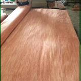 Boa qualidade do folheado de madeira natural para a decoração, mobília