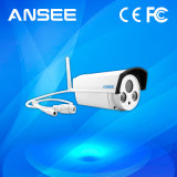 IP van de kogel Camera met Hoge Resolutie voor het Systeem van het Alarm van het Huis