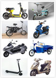 12-29inch 180W-350W 36V-48V BLDC E-Fahrrad schwanzloser Motorrad-Fahrrad-Naben-Motor