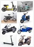 motor sem escova do cubo da bicicleta da motocicleta de 12-29inch 246V-48V 100W-350W para a E-Bicicleta