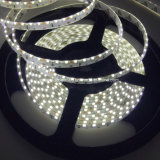 Indicatore luminoso di striscia dei prodotti LED dell'OEM 300mm