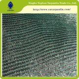 HDPE landwirtschaftliches bewirtschaftendachgrünes Sun-Farbton-Netz Top1111