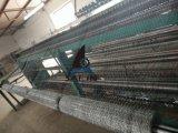 Rete metallica galvanizzata esagonale del pollo di Sailin