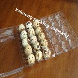 Bandejas plásticas do ovo de codorniz do espaço livre do fornecedor de China para a venda