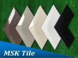 Mattonelle di ceramica lustrate Speciale-A forma di dell'OEM