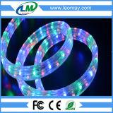 편평한 유연한 LED 밧줄 빛 2 년 보장 4 철사