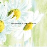 100%Polyester Sun Pflanze Pigment&Disperse druckte Gewebe für Bettwäsche-Set