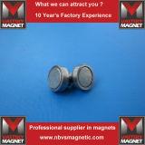 Ami magnetici permanenti con il rivestimento annerente