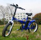 전기 자전거를 접히는 36V 250W 뚱뚱한 타이어