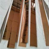 Type annexe garniture décorative de tuile de 304 garnitures de tuile d'acier inoxydable en métal d'or