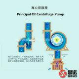 Beste Qualitätsschlamm-Pumpe für Verkauf