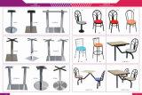 FRP 식탁 & 의자는 의 많은 것 선택을%s 디자인한다