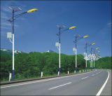 Réverbère solaire lumineux de DEL fait dans le certificat de la Chine TUV