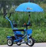 Das angepasste Baby-Dreiradcer scherzt Dreirad