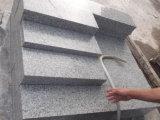 Камень гранита G655/серые плитки гранита для вымощать/плакирование Kerbstone/стены
