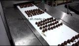 Linha de produção automática da máquina da fatura de chocolate do KH 150