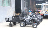 Motore elettrico ATV della grande azienda agricola rossa nera di memoria