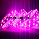 Striscia flessibile di Apa102 Digitahi LED