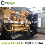 80kw Biogasの生成、Biogasの発電