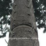 Torre de antena Monopole de aço camuflada torre da torre da árvore da árvore de pinho