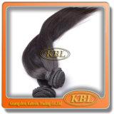 Pacotes malaios do Weave do cabelo de Kbl