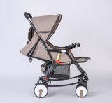 Baby-Spaziergänger, Kind-Spaziergänger, Kinder Spaziergänger, BabyPram, Kinderwagen