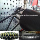Macchinario vuoto della plastica del tubo di bobina della parete dell'HDPE
