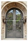 Ausgeglichenes Glas-Tür mit Eisen-Entwürfen