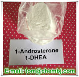Construction Prohormone 1-Androsterone (1-DHEA de muscle ; 1-Andro) Poudre