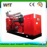 El biogás 40kw generador con 6 cilindros y enfriador de agua de China