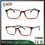 Het recentste Optische Frame T5013 van het Oogglas van Eyewear van het Frame van de Glazen van het Ontwerp van de Manier Tr90