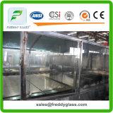 specchi di 2-6mm/specchi mobilia/specchio di vetro con la parte posteriore singola o doppia di alluminio dell'azzurro e rivestita