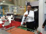Glasreinigungs-Maschinerie-Glas-Reinigung und trocknende Maschine