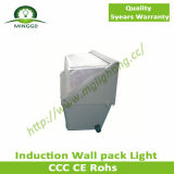 40W~60W Waterproof Outdoor Induction Wall Pack Light
