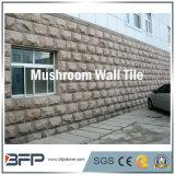 壁のクラッディングのための自然な錆ついたきのこのスレートのタイル