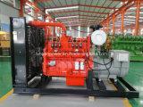 De Generator van het gas voor Aardgas en Biogas met Ce- Certificaat