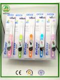 alta qualidade de 30PC Satnd que embala o toothbrush quente do adulto das vendas