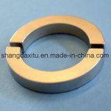 De lage Industriële Magneten van het Neodymium van het Verlies van het Gewicht in Motor, Generator, Pomp, de Magnetische Toepassing van de Separator