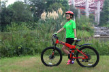 E-Bici di alluminio, bici piegante di E