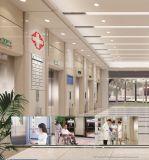 Levage confortable de bâti d'ascenseur d'hôpital avec le grand espace (modèle : SY-BBZ-2)