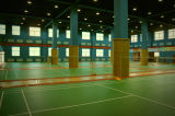 PVC/Plastic/de VinylBevloering van de Oppervlakte van de Bevloering van de Sport van het Badminton