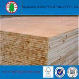 Film publicitaire en bois normal Blockboard de placage de qualité