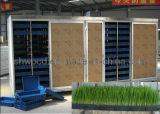 밀 순 성장하고 있는 기계, 보리 성장하고 있는 기계, 기계를 설치해 잔디