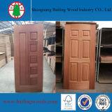 Le bois différent plaque la peau de porte moulée par HDF